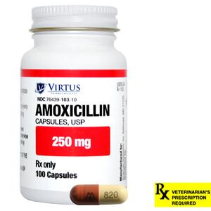 Amoxicillin benefits